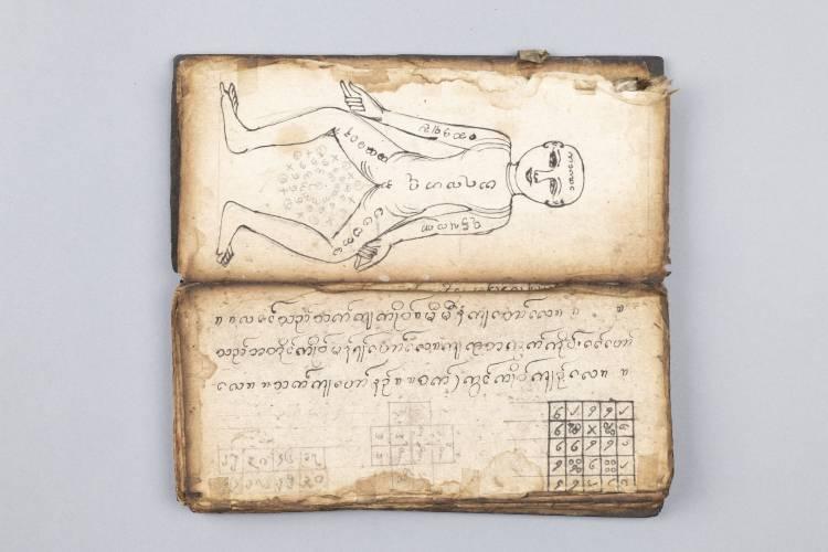 Read manuscript